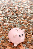 Piggy bank over coins business & finance concept Stock Images