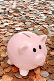 Piggy bank over money business & finance concept Royalty Free Stock Image