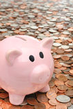 Piggy bank over money business & finance concept Stock Photo