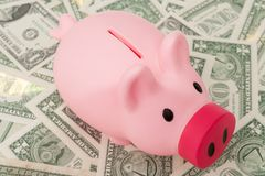 Piggy bank on paper money Stock Photo