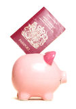 Piggy bank with passport. Cutout Royalty Free Stock Images
