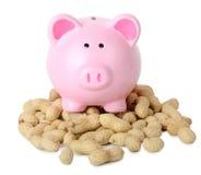Piggy bank peanuts Royalty Free Stock Photos