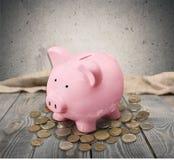Piggy bank, pengar Royaltyfri Fotografi