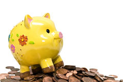 Piggy Bank and Pennies. Cute yellow piggy bank on a huge pile of pennies. Isolated on white Stock Image