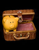 Piggy bank picnic Royalty Free Stock Images