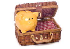 Piggy bank picnic Stock Photos
