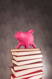 Piggy bank on a pile of books. Side view of a piggy bank on a pile of books - studio picture Stock Photos