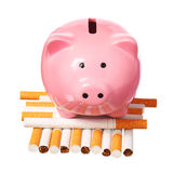 Piggy Bank on pile of Cigarettes isolated on white. Concept Royalty Free Stock Image