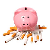 Piggy Bank on pile of Cigarettes isolated on white Royalty Free Stock Photos