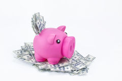 Piggy bank on pile of 100 dollar notes Royalty Free Stock Photos