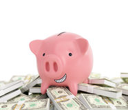 Piggy bank on a pile of money. Smiling piggy bank standing on a pile of money Stock Images