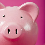 Piggy bank pink background close-up Stock Photography