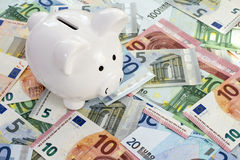 Piggy bank placed on Euro currency Royalty Free Stock Photography