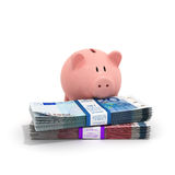 Piggy bank placed at the stacks of Euro bills Royalty Free Stock Images