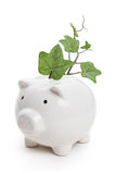 Piggy bank and plant Stock Photo