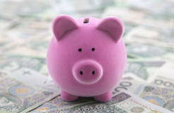 Piggy bank on polish money Stock Photos