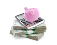 Piggy bank with polish money and calculator Stock Photography