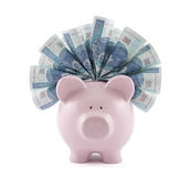 Piggy bank with polish money Stock Photography