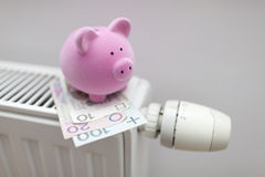 Piggy bank with polish money on radiator Stock Images