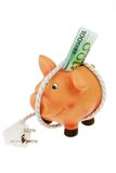 Piggy bank with power cord and plug. A piggy bank with power cord and plug. Save energy and save costs stock image