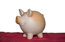 Piggy bank. On red carpet isolated on white Royalty Free Stock Photography