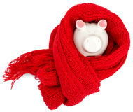 Piggy bank with red scarf Stock Image