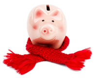 Piggy bank with red scarf Stock Photo