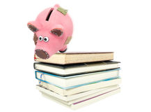 Piggy bank in risk situation Stock Image