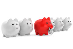 Piggy bank in row with one red secured with combination lock Stock Photos
