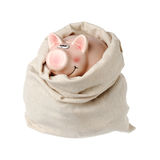 Piggy bank in a sack Royalty Free Stock Photography