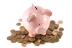 Piggy bank sat on coins Stock Photo