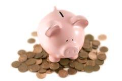 Piggy bank sat on coins stock photo