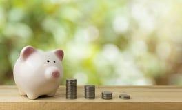 Piggy bank save coins, saving money concept royalty free stock photos