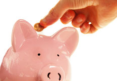 Piggy bank saving Royalty Free Stock Photo