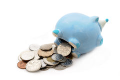 Piggy bank saving money No.15 Stock Image