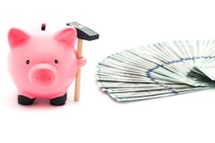 Piggy bank / saving money / American dollars on the white background Royalty Free Stock Photo