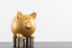 Piggy bank saving Stock Photo