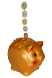 Piggy Bank Savings Stock Image