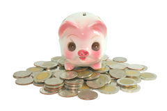 Piggy bank. Savings Stock Image
