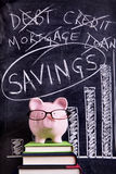 Piggy Bank with savings advice Royalty Free Stock Images
