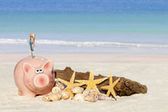 Piggy bank savings with banknotes Stock Images