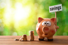 Piggy bank with savings billboard on table and nature background. Concept savings with piggy bank and coins. Piggy bank with savings billboard and money on Stock Photography