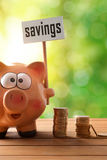 Piggy bank with savings billboard on table and nature vertical. Concept savings with piggy bank and coins. Piggy bank with savings billboard and money on wooden Stock Images