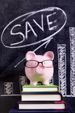 Saving plan piggy bank money growth vertical Stock Images