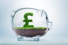 Piggy bank savings Royalty Free Stock Image
