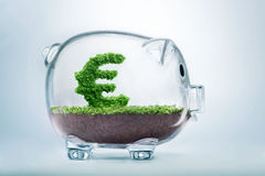 Piggy bank savings. Concept with grass growing in shape of Euro sign royalty free stock photo