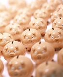 Piggy Bank Savings Finance. Many piggybanks with the main focus on the piggybank in the center Royalty Free Stock Images