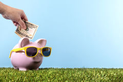 Piggy Bank retirement saving plan grass blue sky copy space Royalty Free Stock Photos