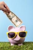 Piggy Bank saving plan grass blue sky vertical royalty free stock photography