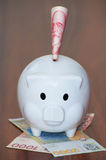 Piggy bank with Serbian banknotes Royalty Free Stock Image
